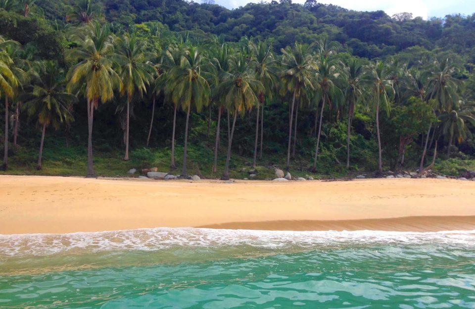 5-motivos-para-visitar-puerto-vallarta